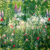 Wild flower meadow green-  Blumenwiese